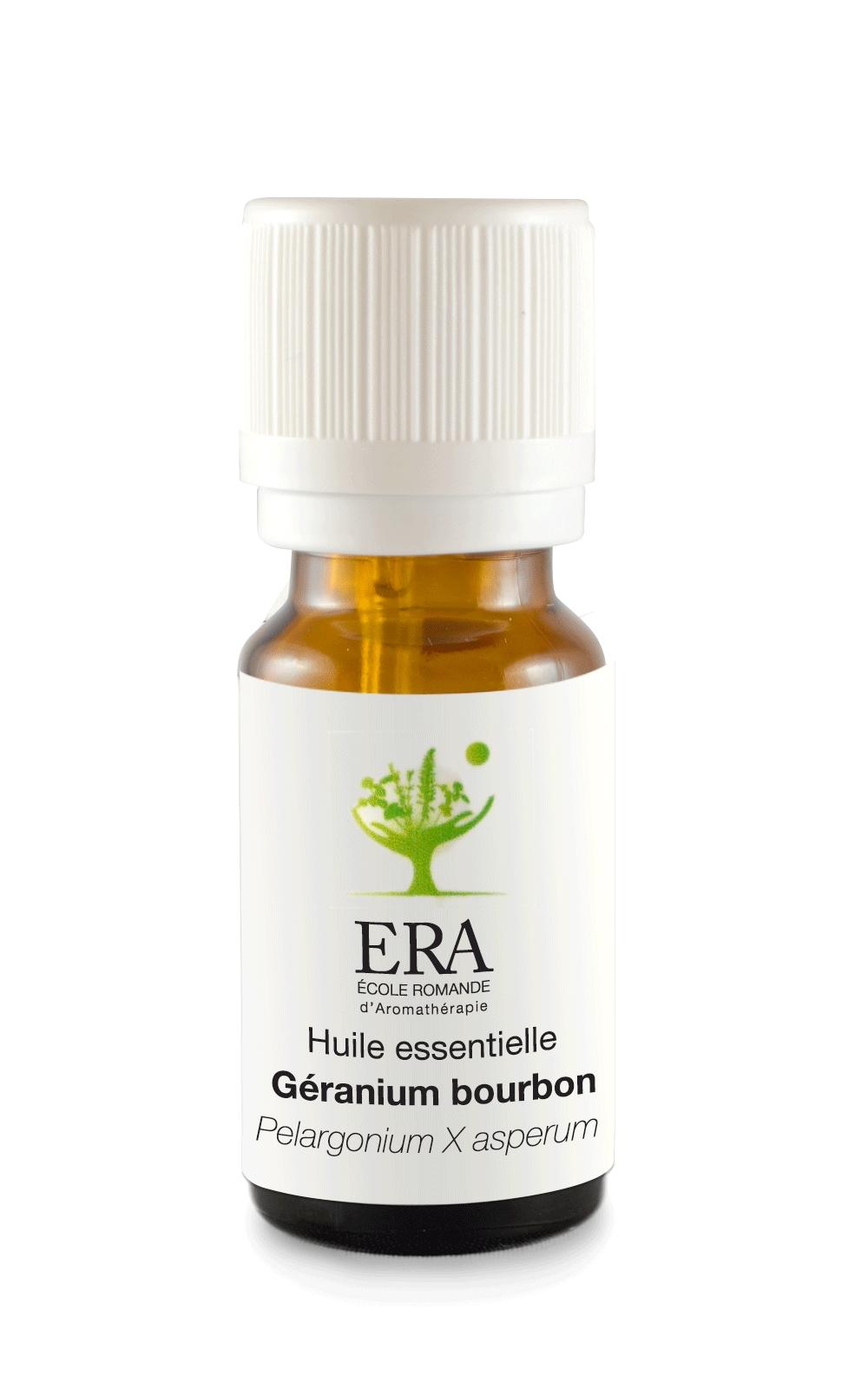 Géranium Bourbon - Pelargonium asperum - Géraniacées