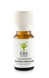 Achillée millefeuille - Achillea millefolium - Astéracées